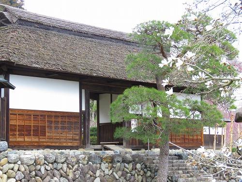 20160328_anrakuji_057.jpg