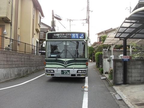 ky-bus-n1-1.jpg