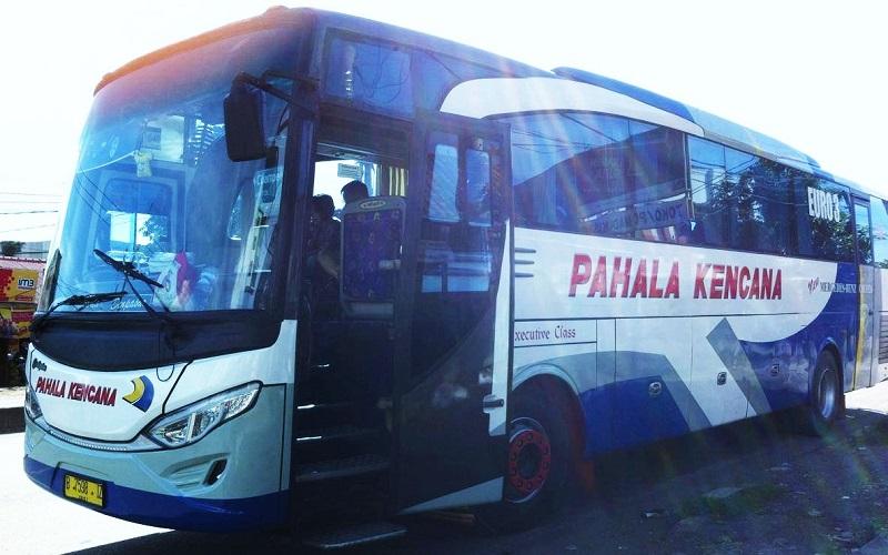 bali-bus-800-500.jpg