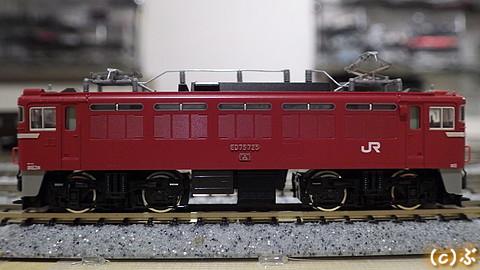 IMGP7565.jpg