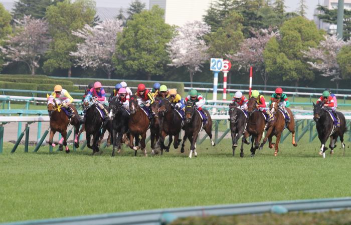 2016 桜花賞 レース