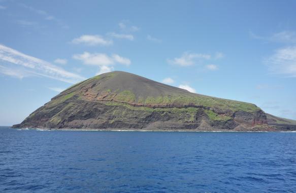 鳥島image