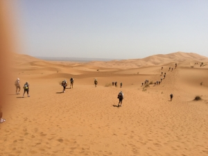 砂丘をゆく