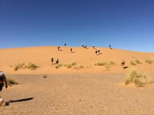 ときどき砂丘も出現