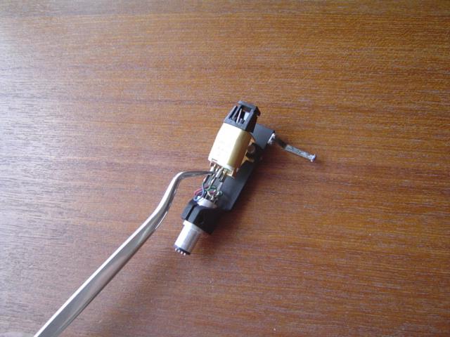DSC01906.jpg
