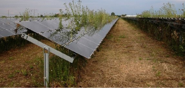 Solar Panel 4