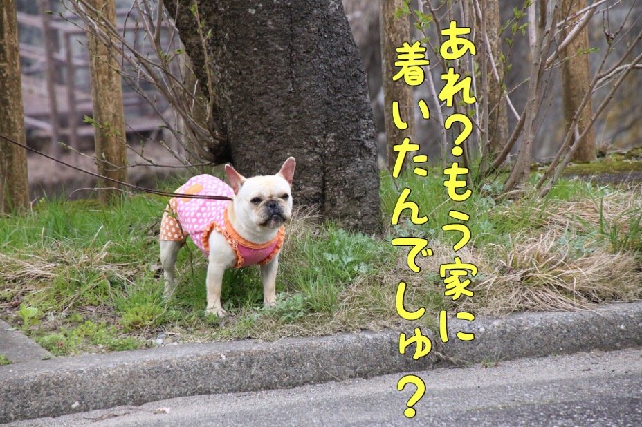 富山紀行 2