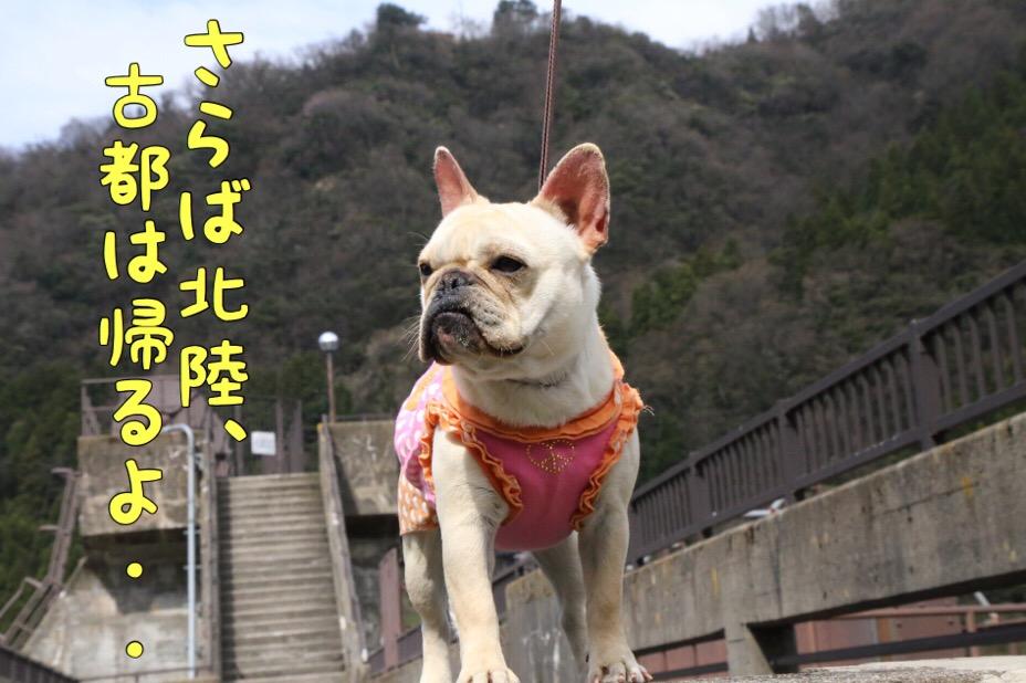 富山紀行 5