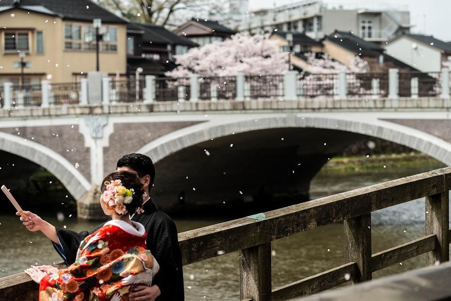 2016.04.06浅野川の桜