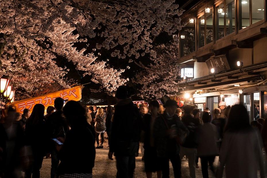 2016.04.06金沢城の桜9