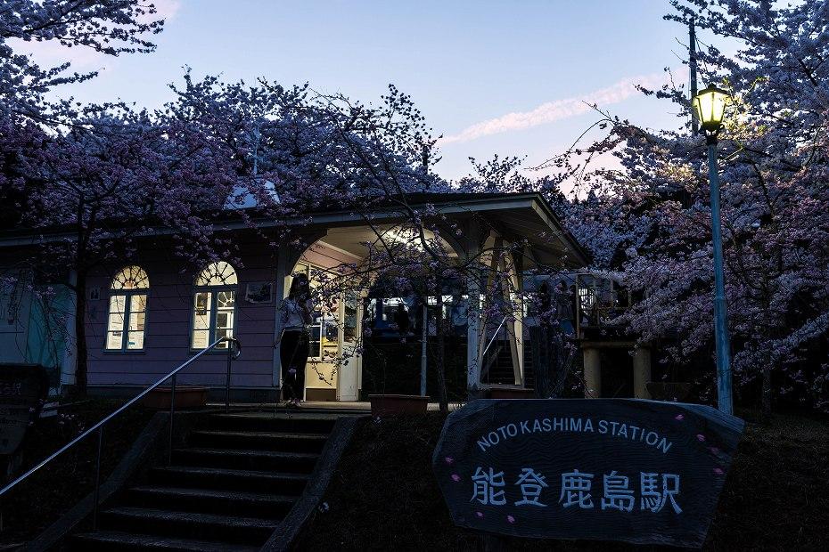 2016.04.09能登さくら駅の桜8