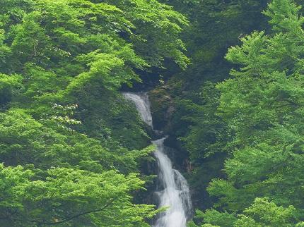 諏訪の滝_その2