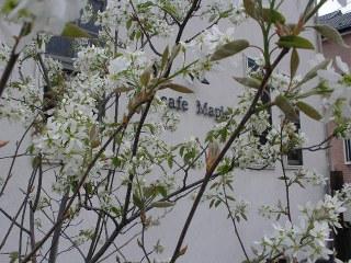 16nenn-jyu-nnberi-3.jpg