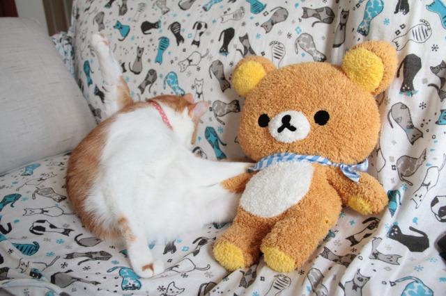 リラックマと猫2