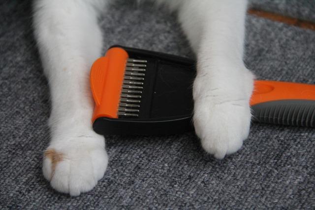 猫抜け毛ブラシ5