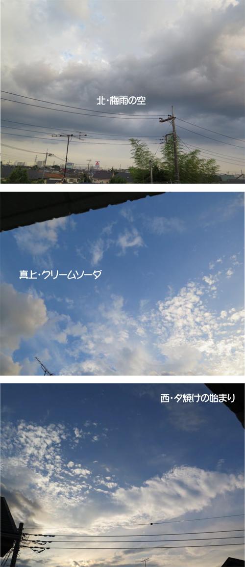 2016-0617-3.jpg