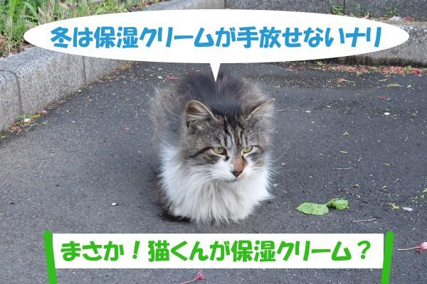 冬は保湿クリームが手放せないナリ 「まさか!猫くんが保湿クリーム?」
