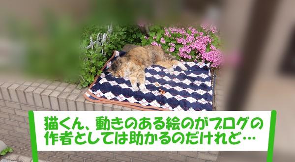 「猫くん、動きのある絵のがブログの作者としては助かるのだけれど…」