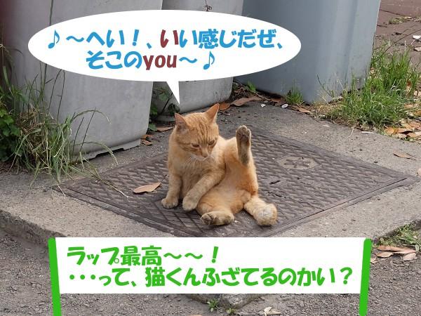 ♪~へい!、いい感じだぜ、そこのyou~♪ 「ラップ最高~~!って、猫くんふざてるのかい?」