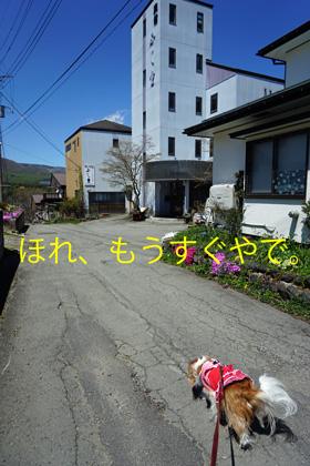 20160519 (16)