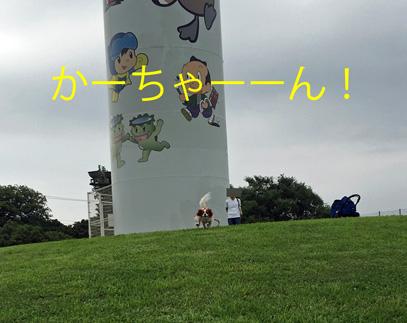 20160721 (1)