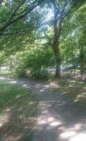 2016 木場公園2