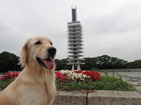 2駒沢公園