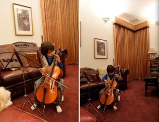 cello6_20160701203237811.jpg