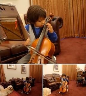 cello7_20160701203237fc0.jpg