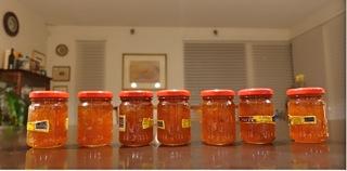 marmalaide8.jpg