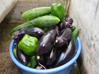 野菜リサイズ
