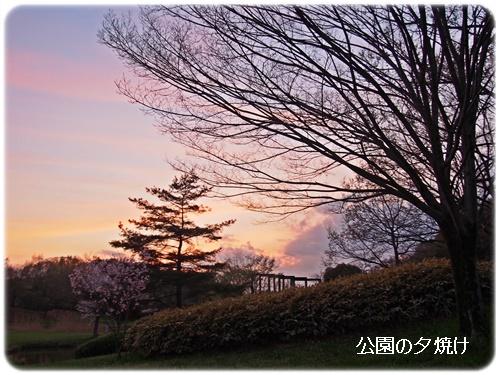 公園の夕焼け