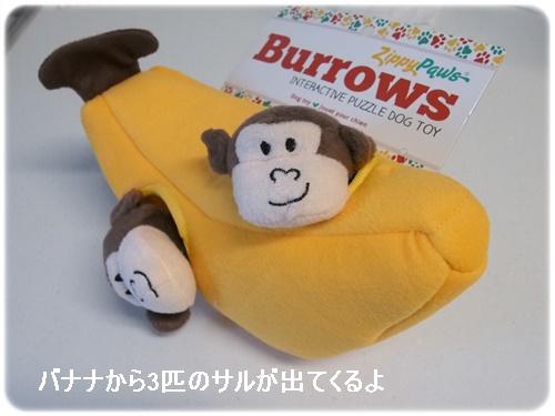 バナナの中からお猿さん