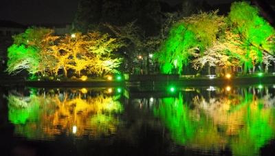 八鶴湖夜景 (400x227)