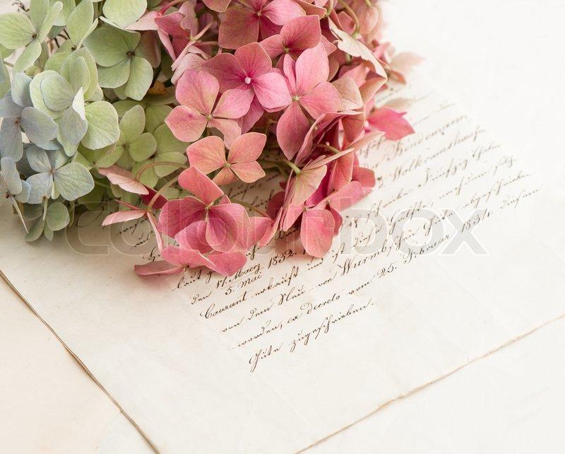 8082774-old-love-letters-and-flowers-of-garden-hortensia20160617.jpg