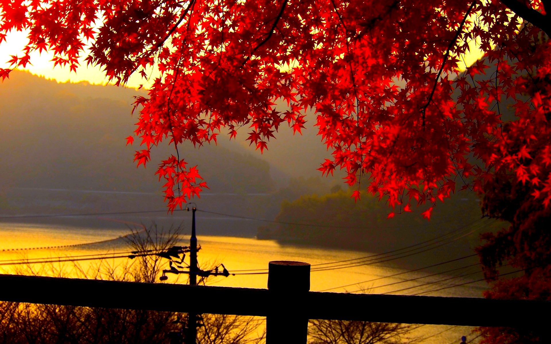 Beautiful-autumn-leaves-wallpapers-for-desktop20160613.jpg