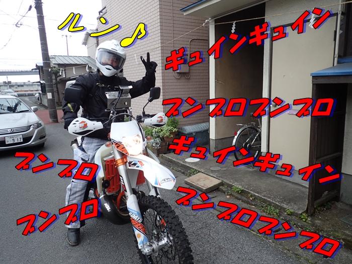 P4240144.jpg