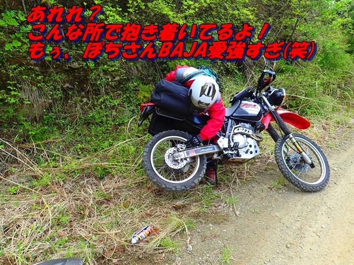 P5010183-2.jpg