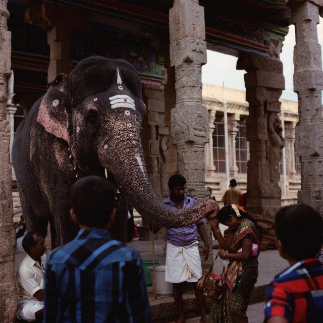 nostalgic South India 03