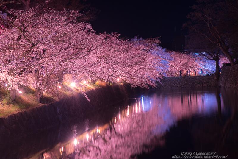 2016 4月5日 松本城 3-3767