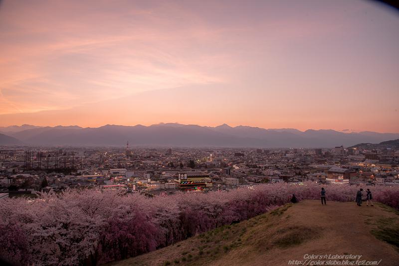 2016 4月8日 弘法山 5-3931