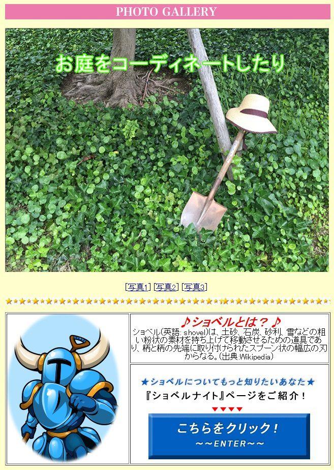 image_5406.jpg