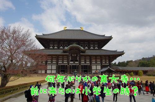 RK52G3915_Y.jpg
