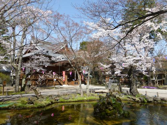 美しい庭園から望む懐古神社・本殿