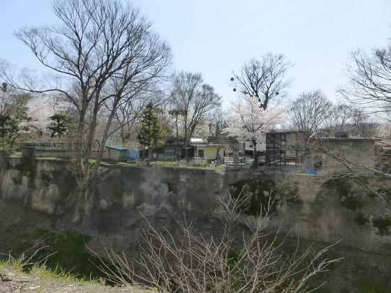 谷を挟んで反対側にある小諸市動物園