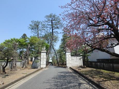 豪徳寺 3