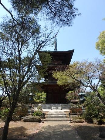 豪徳寺 10