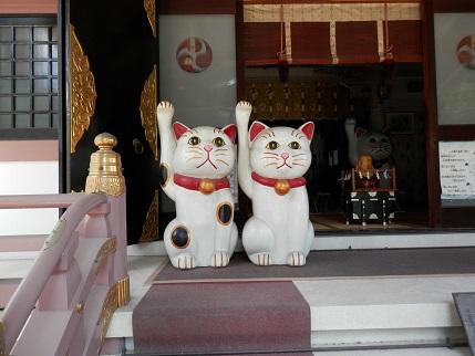 今戸神社 16 6
