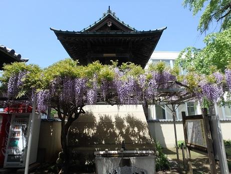慈眼寺 2
