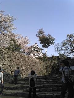 hikoneeeezyoumawari.jpg
